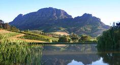 Alluvia Wine Estate - Bass and trout.