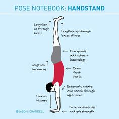 Refine, strengthen, repeat. A full tutorial for Handstand.