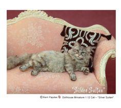 "Silver Persian ""Silver Sultan"" Kerri Pajutee"