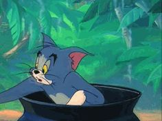 New Beginnings 66 Tom And Jerry Gif, Tom And Jerry Memes, Tom And Jerry Cartoon, Cartoon Live, Cartoon Memes, Best Cartoons Ever, Funny Cartoons, Gifs, Tom And Jerry Wallpapers