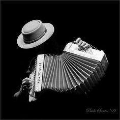 Accordion Instrument, Rockabilly Art, Music Backgrounds, Basketball Art, Music Aesthetic, Music Wallpaper, Jazz Musicians, Low Key, Live Music