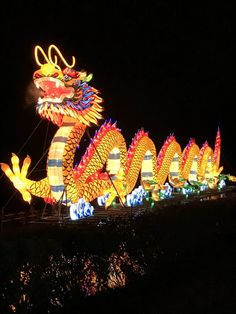 Dragon at Chinese Lantern Festival Chinese Lantern Festival, Fish Lamp, Egg Carton Crafts, Snow Sculptures, Chinese Embroidery, Dragon Crafts, Horse Crafts, Dragon Boat, Chinese Lanterns