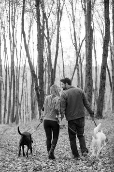 © Julia Jane Studios   Daily Dog Tag   Fall-engagement-session-in-woods-with-dogs,