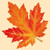 Империя Поздравлений - - Fall Leaves Tattoo, Autumn Tattoo, Autumn Leaves, Watercolor Art Landscape, Watercolor Projects, Butterfly Art, Flower Art, Leaf Photography, Fall Wallpaper