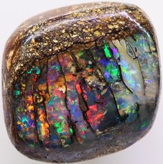 Boulder Opal Wood Fossils 17 x 17 x 8mm 21.55 carats Auction #603467 Opal Auctions
