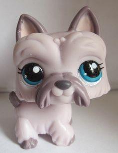 littlest pet shop dog