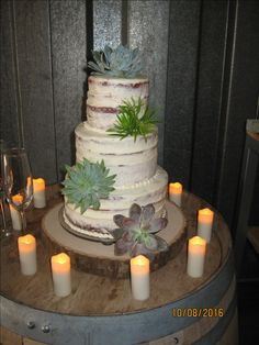 A naked cake with crumb coating and decorated with succulents. Compliments of Brenda's Creative Cakery.