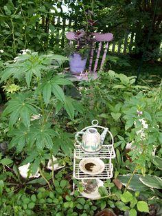 Child's Tea Party Garden