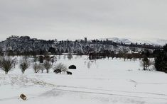 Stirling Castle and the Ochil Hills braving the #beastfromtheeast