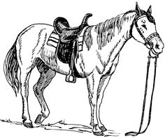 Horse Coloring Pages 4