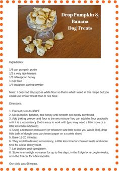 Homemade Dog Food Easy Homemade Pumpkin Dog Treat Recipes That Will Make Your Tail Wag! Best Treats For Dogs, Diy Dog Treats, Healthy Dog Treats, Homemade Dog Cookies, Homemade Dog Food, Dog Biscuit Recipes, Dog Food Recipes, Food Tips, Easy Dog Treat Recipes