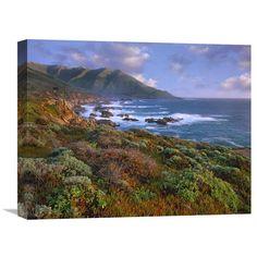 Global Gallery Cliffs and the Pacific Ocean Garrapata State Beach Big Sur California Wall Art - GCS-396844-1620-142