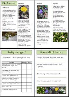 Norway Language, Education, Languages, Grammar, Anna, Kids, Nature, Idioms, Young Children