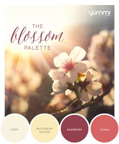 10% OFF The Blossom Palette! Use Promo Code BL10 At Checkout. Shop Now at www.YummiCandles.com