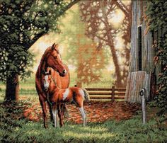 Dimensions Needlecrafts Counted Cross Stitch, Mare And Foal Dimensions Needlecrafts,http://www.amazon.com/dp/B0030P12ZE/ref=cm_sw_r_pi_dp_hhXZsb00P74ZE0BD