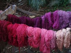 Fiber dyeing with Cochineal