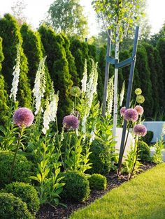 Unique Gardens, Back Gardens, Beautiful Gardens, Outdoor Gardens, Front Garden Landscape, Front Yard Landscaping, Lawn And Garden, Arborvitae Landscaping, Back Garden Design