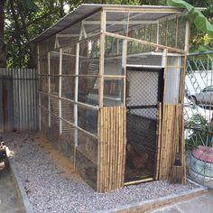 NooJo Art and Farm