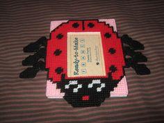 Lady Bug cross stitch photo frame