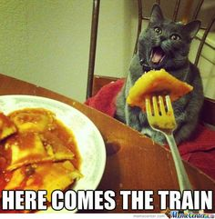 Open Up Kitty Meme | Slapcaption.com