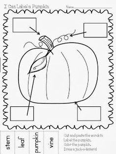 Maggie's Kinder Corner: Here's a great seasonal labeling FREEBIE ~ we are using these pages for a fun cutting/pasting activity for Fall Kindergarten 2014 Fall Preschool, Kindergarten Science, Science Classroom, Kindergarten Classroom, Classroom Activities, Montessori Elementary, Preschool Class, Teaching Science, Teaching Reading