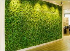 vertical Moss Wall