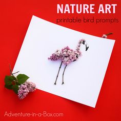 Nature Art Prompts: Birds : Finish the ink drawings of birds with natural materials. Creative summer craft for artists of all ages! Collaborate with nature and create gorgeous nature art. Nature Activities, Craft Activities For Kids, Projects For Kids, Crafts For Kids, Arts And Crafts, Craft Ideas, Printable Art, Printables, Bird Free