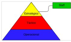 Consultoria interna: quando alguém, dada a natureza do seu trabalho e o seu conhecimento especifico, pode ser chamado a dar um parecer ou a supervisionar individual ou conjuntamente com outros elementos um dado processo da organização.
