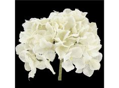 31 White Burlap Hydrangea