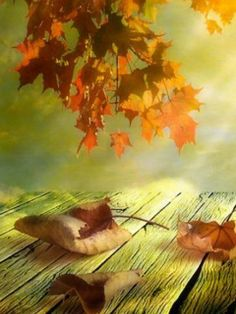 """The Autumn is old; The sere leaves are flying; He hath gather'd up gold, And now he is dying… Old age, begin sighing!"" ― Thomas Hood"
