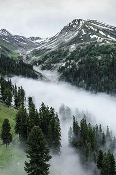 fog and mist.