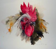 Yann lesacher aquarelles Watercolor Bird, Watercolor Animals, Watercolor Paintings, Watercolours, Rooster Painting, Rooster Art, Chicken Painting, Chicken Art, Trash Polka