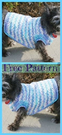 Dog Sweater - Free Patterns With the holidays so close and everyone excited, don't leave your dog out on the fun! Why not make him a Crocheted Dog Sweater for a great Christmas Knitting Patterns For Dogs, Crochet Dog Sweater Free Pattern, Dog Sweater Pattern, Knit Dog Sweater, Dog Pattern, Dog Sweaters, Dog Crochet, Crochet Patterns, Irish Crochet