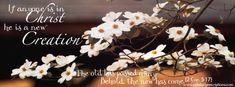 Free spring facebook timeline cover