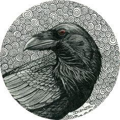 "Crows Ravens:  #Raven ~ ""Corvid,"" by Rick ""Dienzo"" Blanco, Pen, Graphite."