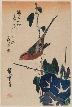 Bird and Morning Glories  Artist Utagawa Hiroshige I, Japanese, 1797–1858 Japanese