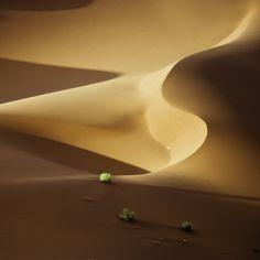 La lumière du désert du Namib
