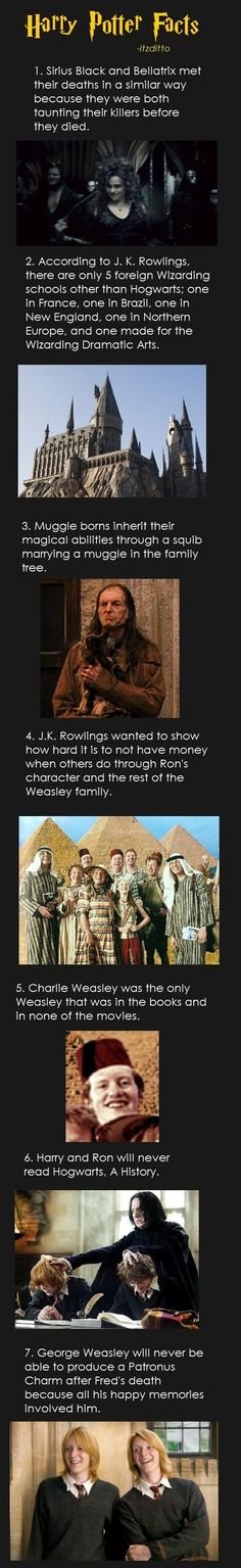 Harry Potter facts part 1 (for those looking) - Hogwarts Ridiculous Harry Potter, Memes Do Harry Potter, Theme Harry Potter, Potter Facts, Harry Potter Books, Harry Potter Love, Harry Potter Universal, Harry Potter Fandom, Harry Potter World