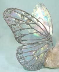 Iridescent wings