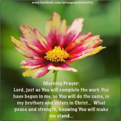Morning Prayer: Lord, just as You will complete the work You have begun in me, so You will do the same, in my brothers and sisters in Christ... What peace and strength, knowing You will make us stand... #morningprayer #instaquote #quote #seekgod #godsword #godislove #gospel #jesus #jesussaves #teamjesus #LHBK #youthministry #preach #testify #pray #stand
