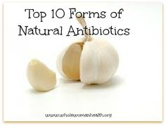 Top 10 Forms of Natural Antibiotics - Whole Woman Health