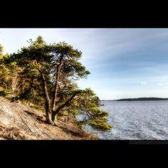 Ängsö. Västerås. Sweden