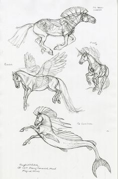 Creature Drawings, Horse Drawings, Art Drawings Sketches, Cool Sketches, Animal Drawings, Mythological Creatures, Fantasy Creatures, Terryl Whitlatch, Horse Anatomy