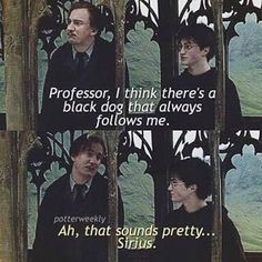 Remus passed on the sass lessons to Harry that he got from Sirius.