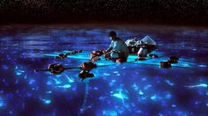 Hopkins, Belize's Bioluminescence Night Tour: Dip Your Hand into the Burnin' Wata! - San Pedro Scoop
