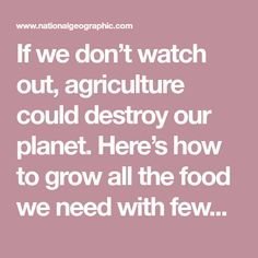 If we don't watch out, agriculture could destroy our planet. Here's how to grow all the food we need with fewer chemicals. Organic Farming, Our Planet, Fertility, Agriculture, Planets, Blessing, Watch, Food, Clock