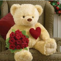 Cuddly teddy bear images - rolly royce car images