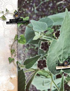 Finding Joy, Site Design, View Photos, Photo Art, Plant Leaves, Scrap, Gallery, Tat, Website Designs