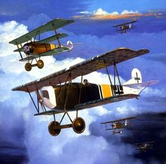 1918 05 Jasta Boelcke Fokker DVII Carl Bolle - The New Machine - Steve Anderson