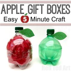 DIY Plastic Bottle Apple Gift Boxes - quick and easy to make - a great Back To…